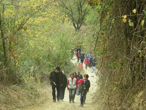 trekking_bra