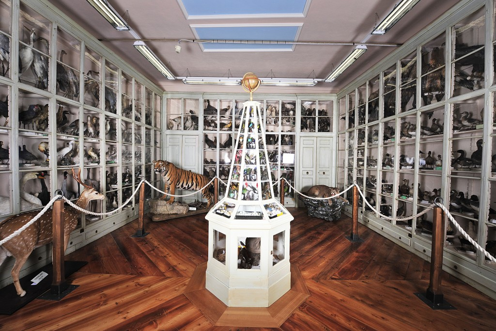 museo_Craveri_foto Pino Falanga (2)
