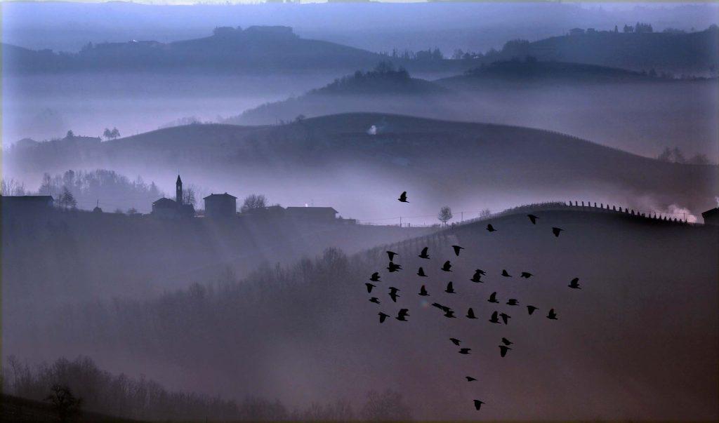 photo murialdo COLLINE DI MONFORTE)