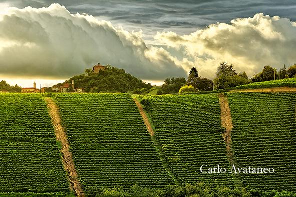 avataneo mostra roero Vigneti dominati dal castello di monteu