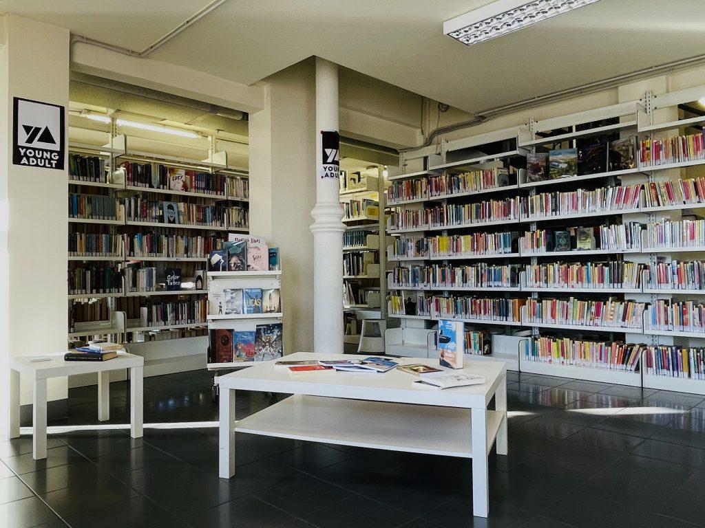 Biblioteca nuove 3