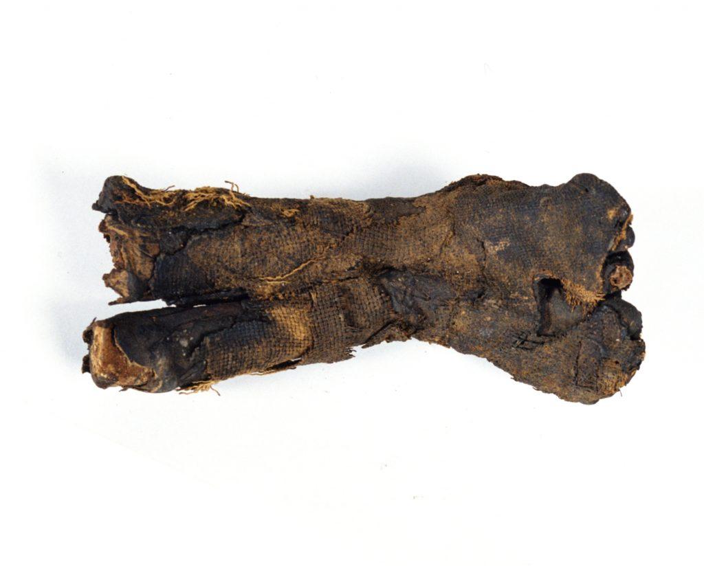 fr mummia-1